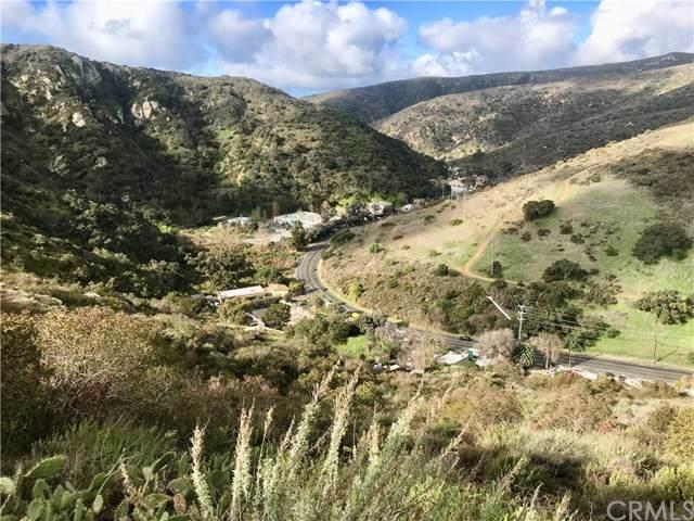 20940 Laguna Canyon, Laguna Beach, CA 92651 (#301843343) :: Keller Williams - Triolo Realty Group