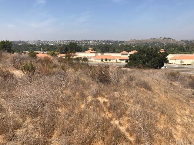 0 Santa Ana Canyon, Anaheim Hills, CA 92808 (#301848408) :: Whissel Realty