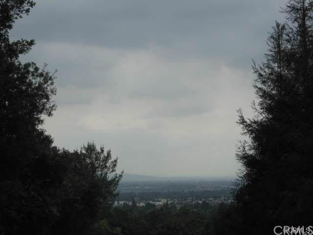 190 Sycamore, Bradbury, CA 91008 (#301865214) :: Whissel Realty