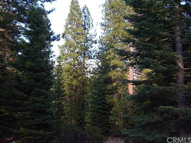 2 N. Old Stage Loop, Weed, CA 96094 (#301873719) :: Keller Williams - Triolo Realty Group