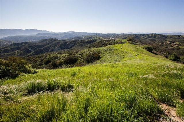 1 Mulholland, Topanga, CA 90290 (#301874543) :: Keller Williams - Triolo Realty Group