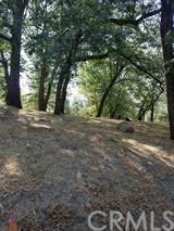 13 Mistletoe Turn - Photo 3