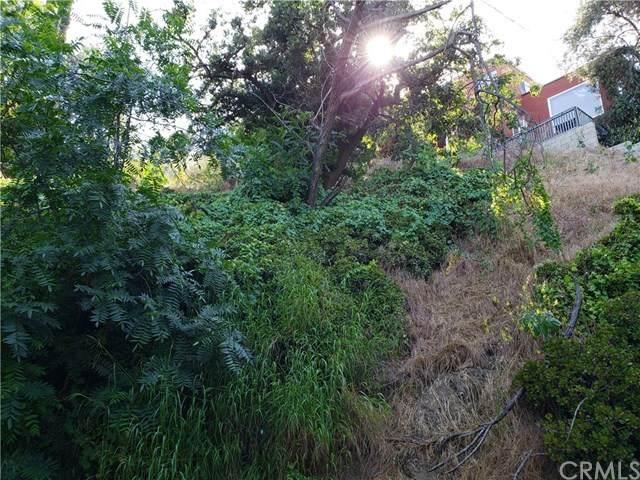 4425 Rose Hill - Photo 1