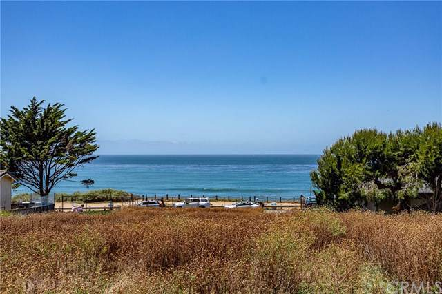 741 Sunset Cliffs, San Diego, CA 92107 (#301878749) :: Whissel Realty