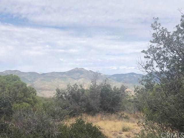 0 Palm Canyon Drive, Mountain Center, CA 92561 (#301882594) :: Keller Williams - Triolo Realty Group