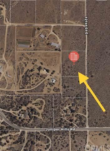 121 Vac/121 Ste/Vic Juniper Hills, Juniper Hills, CA 93543 (#301885242) :: Whissel Realty