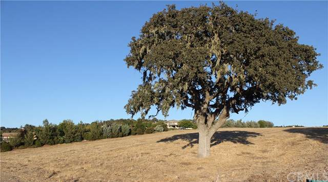 1331 Burnt Rock, Templeton, CA 93465 (#301886166) :: Keller Williams - Triolo Realty Group