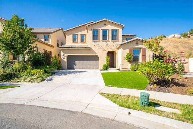 25807 Pipit Drive, Corona, CA 92883 (#301906181) :: Whissel Realty