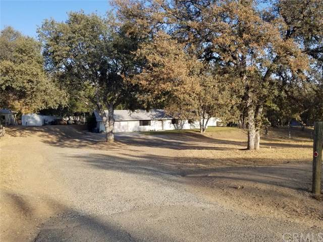 31667 Blackfoot Road, Coarsegold, CA 93614 (#302212859) :: Whissel Realty
