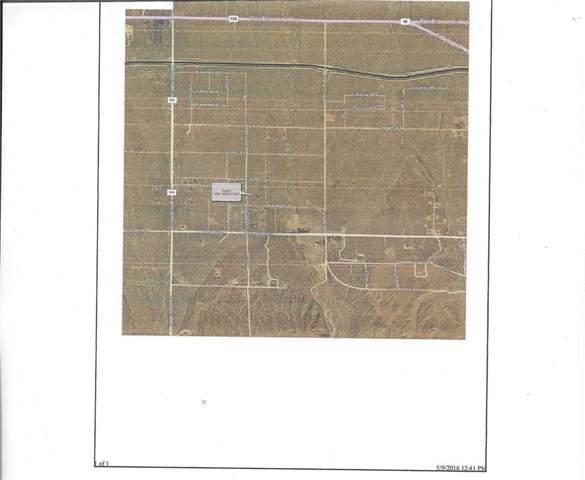 0 Vac/Vic Avenue X10/211 Ste, Llano, CA 93544 (#302303176) :: Keller Williams - Triolo Realty Group