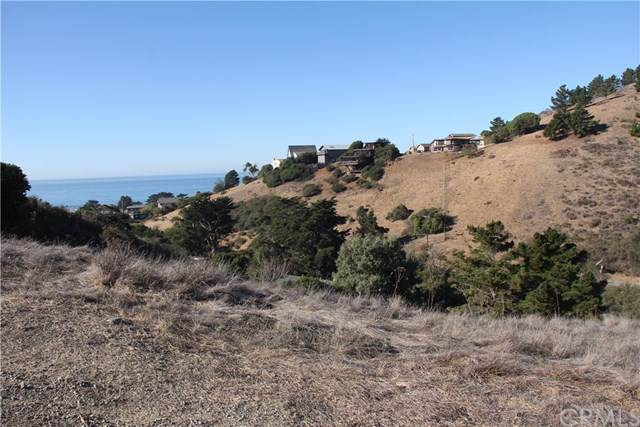3004 Gilbert, Cayucos, CA 93430 (#302306729) :: Whissel Realty