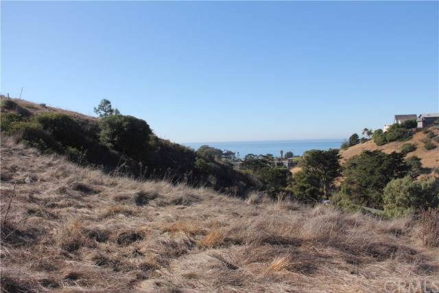 3012 Gilbert, Cayucos, CA 93430 (#302306755) :: Whissel Realty