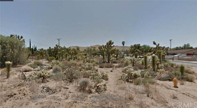 56547 Piute, Yucca Valley, CA 92284 (#302306835) :: Whissel Realty
