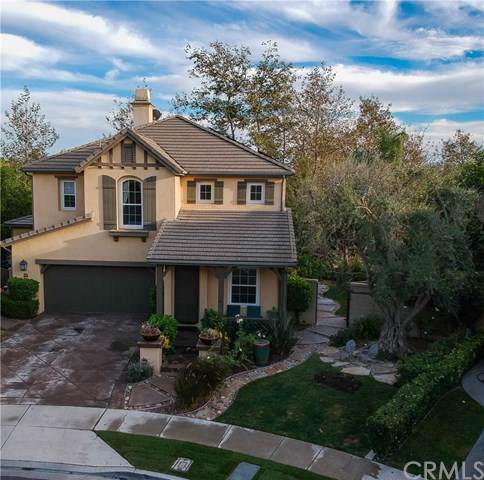 29 Paseo Carla, San Clemente, CA 92673 (#302307691) :: Whissel Realty