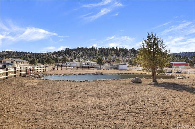 46903 Pioneertown Drive, Big Bear, CA 92314 (#302311786) :: The Yarbrough Group