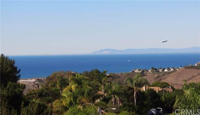 1056 Calle Del Cerro #901, San Clemente, CA 92672 (#302314171) :: Pugh-Thompson & Associates