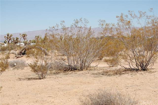 57752 Pimlico, Yucca Valley, CA 92284 (#302314890) :: Whissel Realty