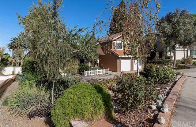 1131 Monte Vista Drive, Riverside, CA 92507 (#302315561) :: Whissel Realty