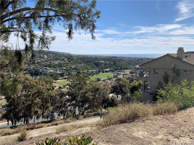 20 Marana, San Clemente, CA 92673 (#302319562) :: Whissel Realty