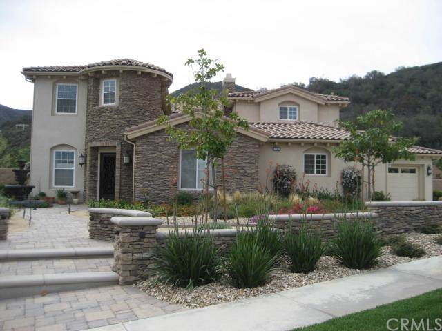 1038 Young Circle, Corona, CA 92881 (#302322865) :: The Stein Group