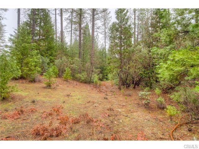0 Pine Tree, Berry Creek, CA 95916 (#302334455) :: Keller Williams - Triolo Realty Group