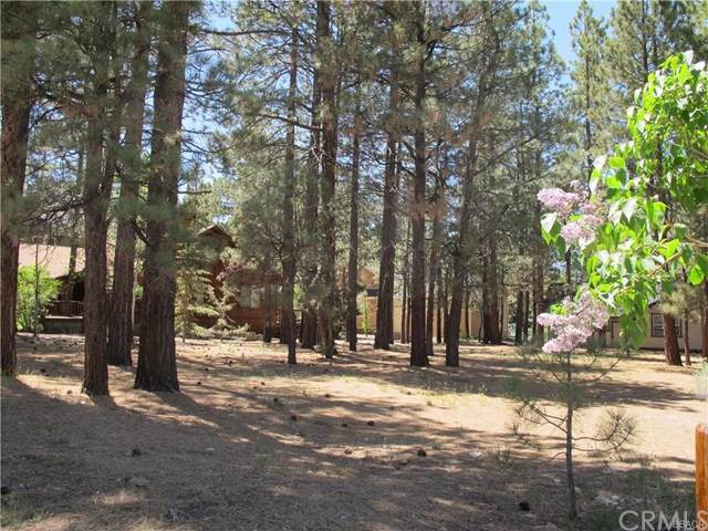 41562 Stone Bridge, Big Bear, CA 92315 (#302335297) :: Compass