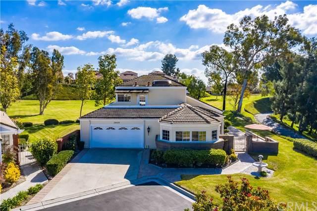 28429 Buena Vista, Mission Viejo, CA 92692 (#302400045) :: Farland Realty