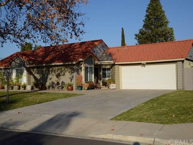 23316 Canyon Pines Place, Corona, CA 92883 (#302400170) :: Compass