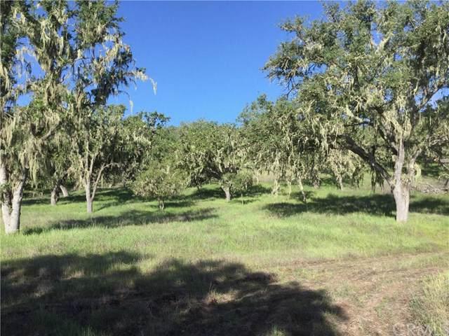 0 Spring Creek, Templeton, CA 93465 (#302408558) :: Keller Williams - Triolo Realty Group
