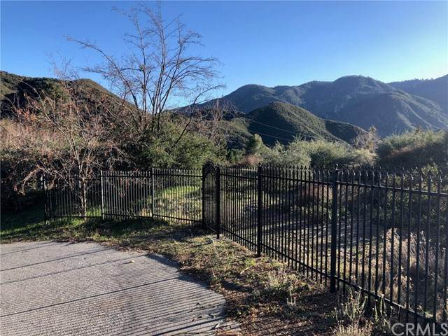 266 Seymour Ln, Lytle Creek, CA 92358 (#302420793) :: Keller Williams - Triolo Realty Group