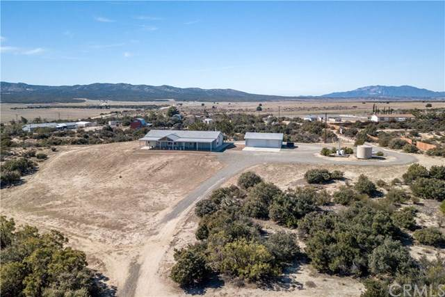 41879 Gassner Road, Anza, CA 92539 (#302435758) :: Whissel Realty