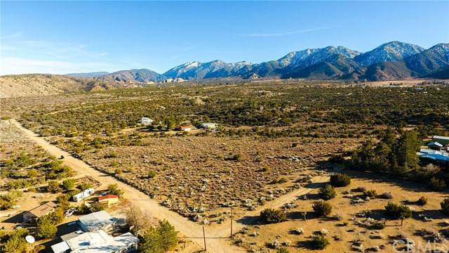 0 Le Page Ranch Rd, Juniper Hills, CA 93543 (#302436538) :: Whissel Realty