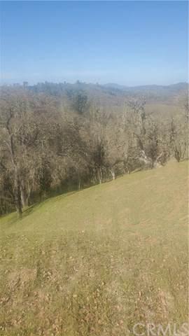 2667 Tree Trap, Bradley, CA 93426 (#302446080) :: Keller Williams - Triolo Realty Group