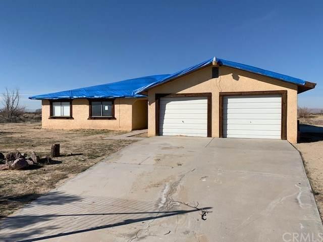 47994 Palma Vista Road, Newberry Springs, CA 92365 (#302454212) :: Keller Williams - Triolo Realty Group