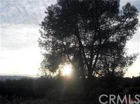 0 Town Creek, Paso Robles, CA 93446 (#302476632) :: Keller Williams - Triolo Realty Group