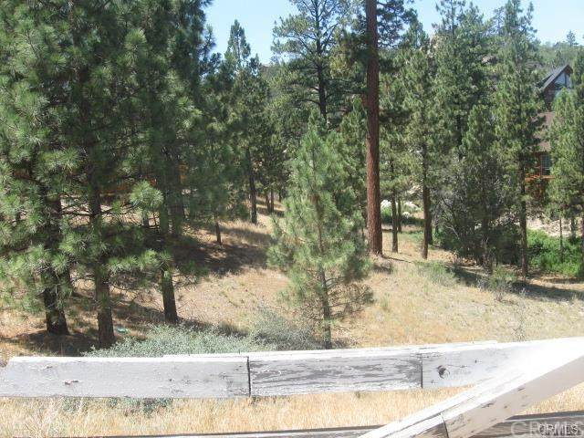 42048 Division, Big Bear, CA 92314 (#302481115) :: Keller Williams - Triolo Realty Group