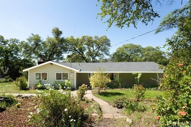 430 Skyline Boulevard, Oroville, CA 95966 (#302481491) :: Keller Williams - Triolo Realty Group