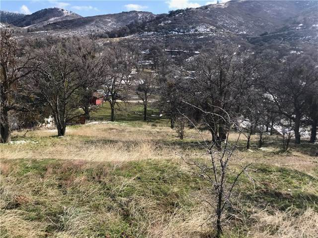 0 Zurich Drive, Lot #177, Tehachapi, CA 93561 (#302486191) :: The Stein Group