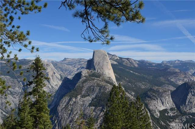 42617 Old Yosemite Road - Photo 1
