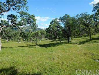 2236 Thunder, Catheys Valley, CA 95306 (#302529944) :: COMPASS