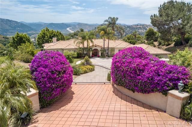 2441 Vern Drive, Fallbrook, CA 92028 (#302548081) :: Solis Team Real Estate