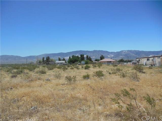 4493 Old Woman Springs, Lucerne Valley, CA 92356 (#302562489) :: Keller Williams - Triolo Realty Group