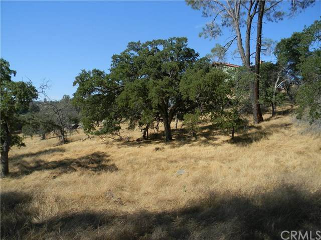 0 Lilley Mountain, Coarsegold, CA 93614 (#302564951) :: Whissel Realty