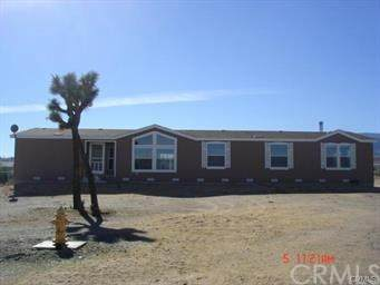 3399 Yucca Terrace Drive, Phelan, CA 92371 (#302570097) :: Keller Williams - Triolo Realty Group