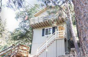 42959 Falls Avenue, Big Bear, CA 92315 (#302579680) :: Cay, Carly & Patrick | Keller Williams