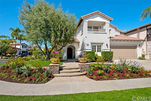 7 Calle Pelicano, San Clemente, CA 92673 (#302582014) :: Whissel Realty
