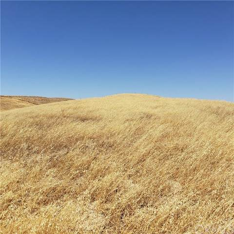 3725 Gruenhagen Flat Way, Paso Robles, CA 93446 (#302582460) :: Whissel Realty