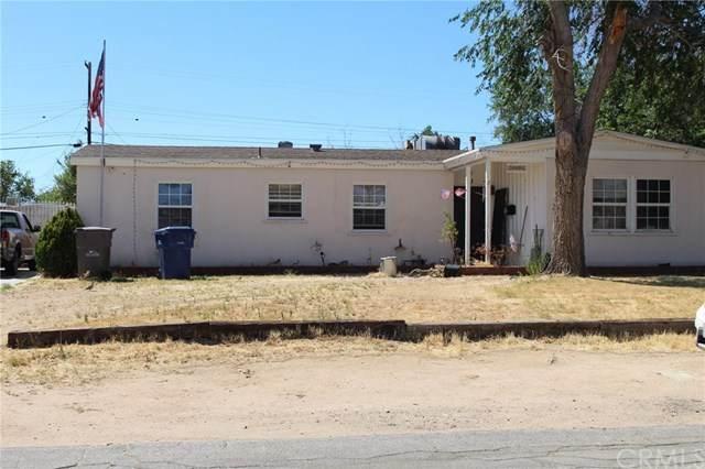 38884 Yucca Tree Street - Photo 1