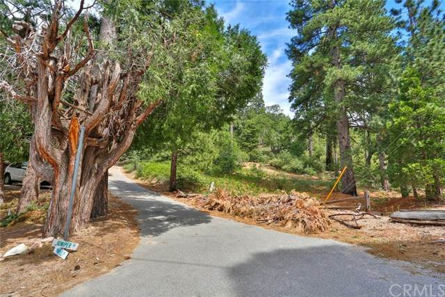535 Coulter, Lake Arrowhead, CA 92352 (#302587222) :: Compass
