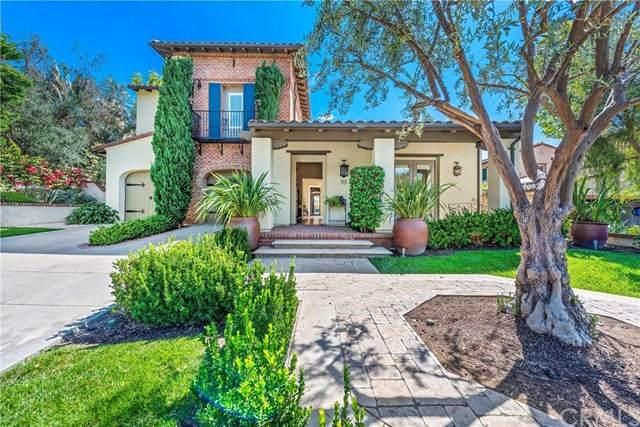 33 Calle Careyes, San Clemente, CA 92673 (#302589204) :: Compass